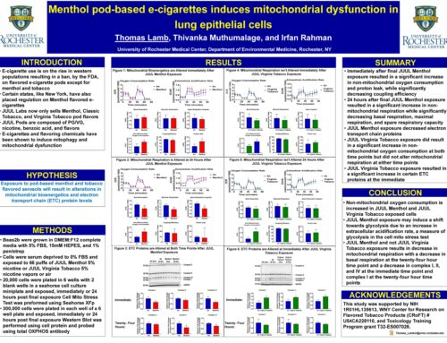 Menthol pod-based e-cigarettes induces mitochondrial dysfunction in lung epithelial cells
